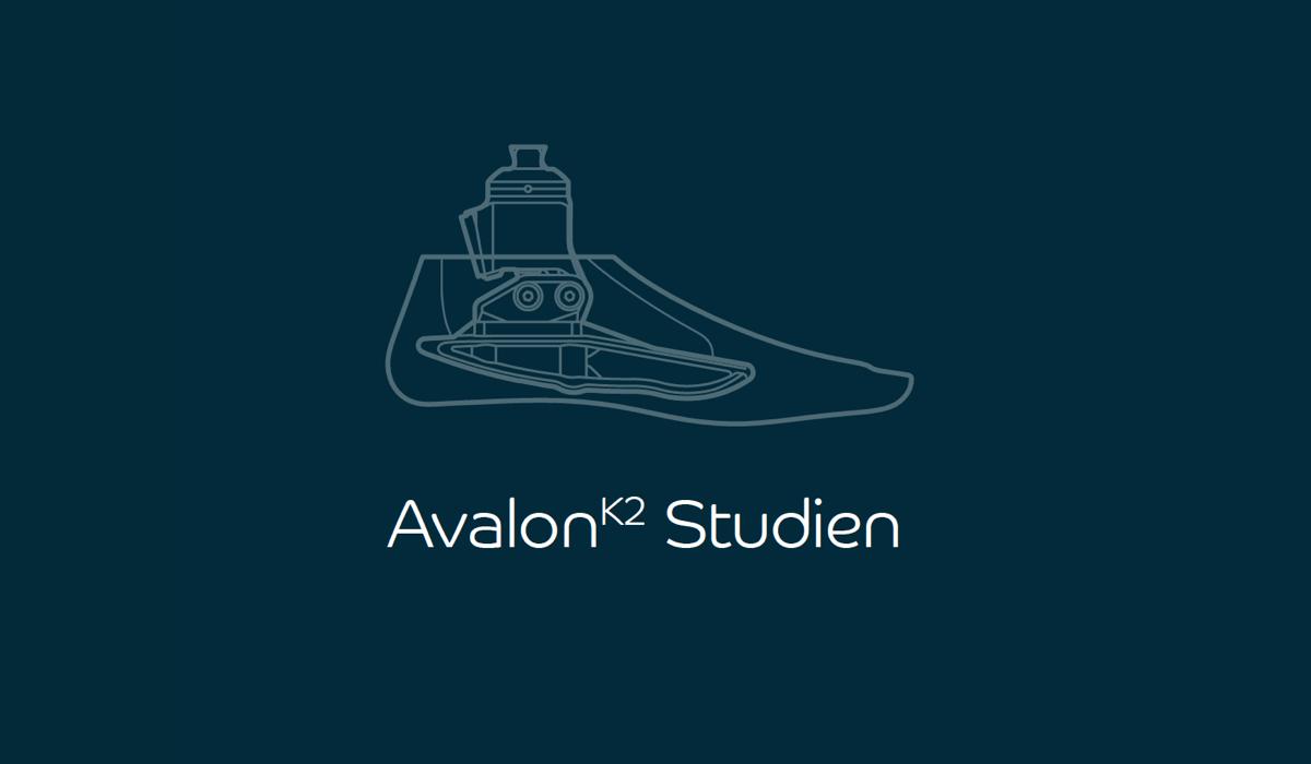 Neu veröffentlichtes Whitepaper: AvalonK2 Studien